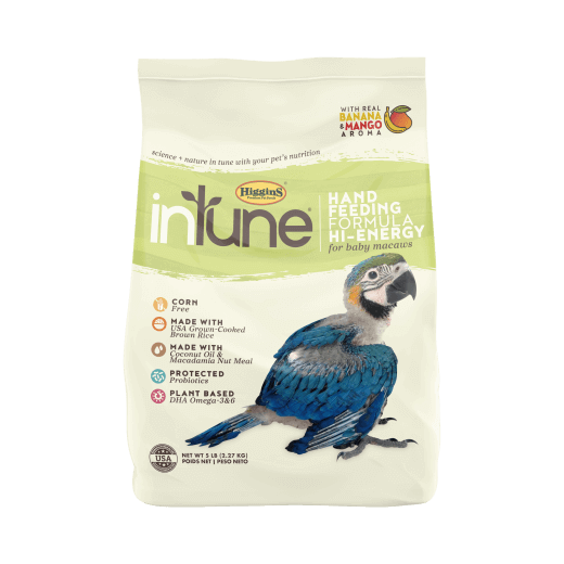 InTune Natural - Handfeeding Formula Hi Energy | 2.27kg Outer (6) - Click to enlarge picture.